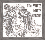 The Mutts Nutts Rescue